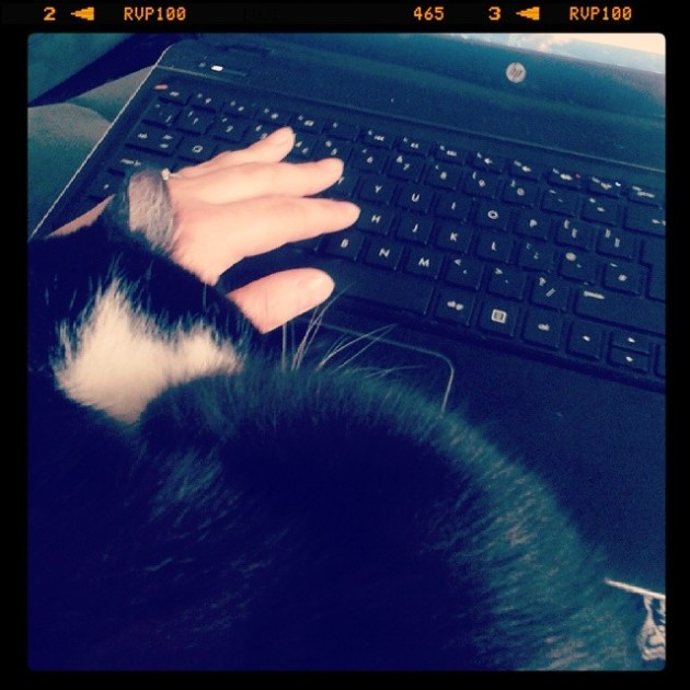 Trying to blog